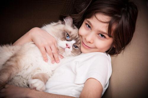 ¿Cómo hacer para que gatos y niños pequeños se lleven bien?