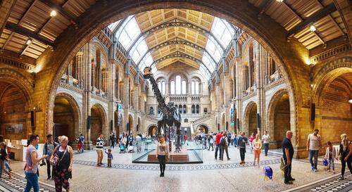 5 mejores museos de historia natural