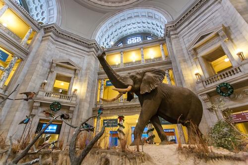 Museo Nacional Smithsonian