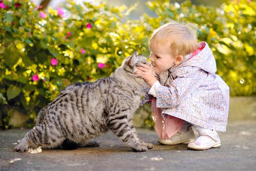Niños pequeños y gatos
