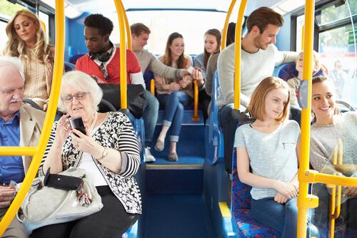 Perros en transporte público