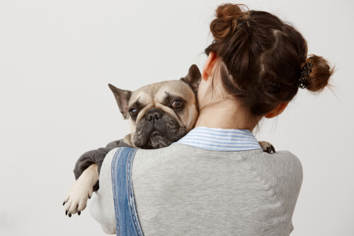 Abrazar perro