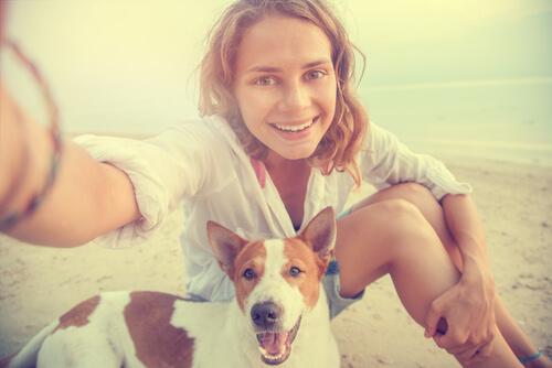 Cómo fotografiar perros