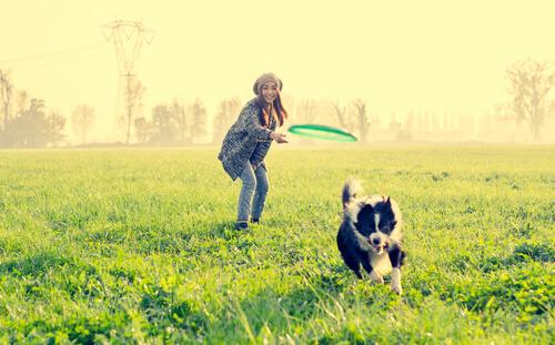 9 cosas divertidas para tu perro