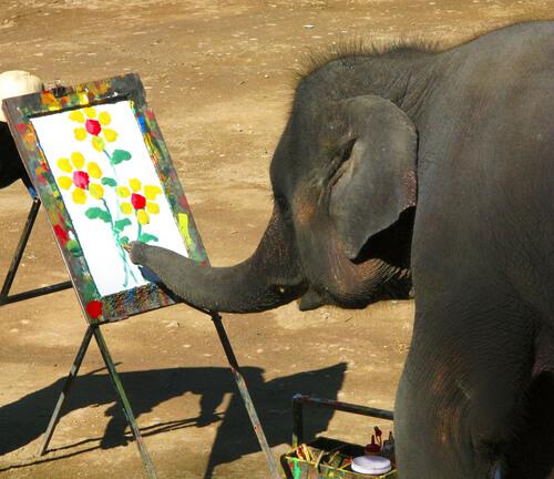 Elefante pintor en Tailandia