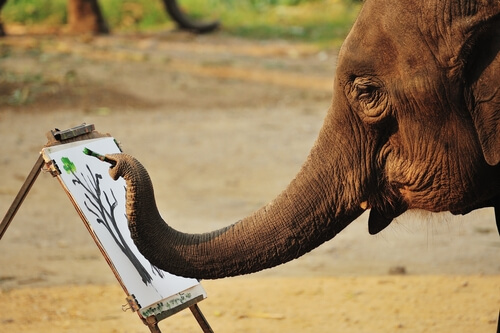 Elefantes que pintan: ¿maltrato animal?