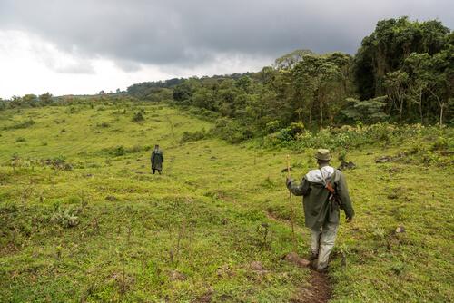Parque Nacional de Virunga: África