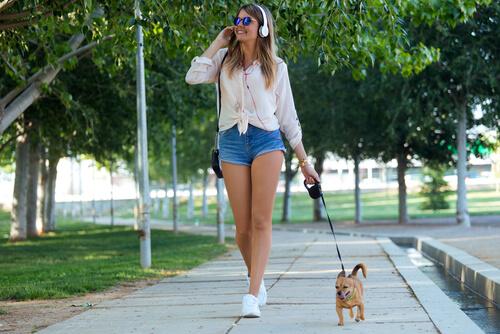 5 razones por las que tu perro merece paseos de calidad
