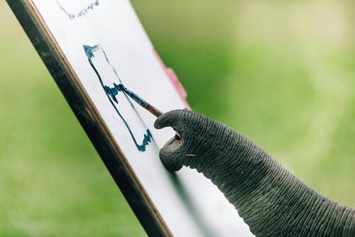 Un elefante puede pintar
