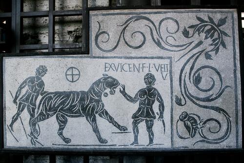 Animales en la Antigua Roma: guerras y sacrificios