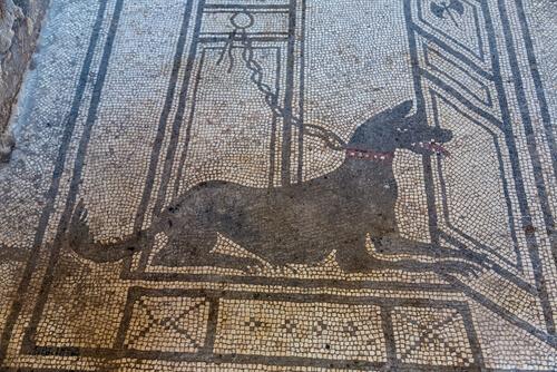 Animales en la Antigua Roma: mascotas