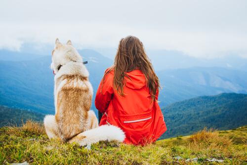 Aventura con perros