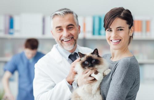 Cinco mejores clínicas veterinarias de Madrid