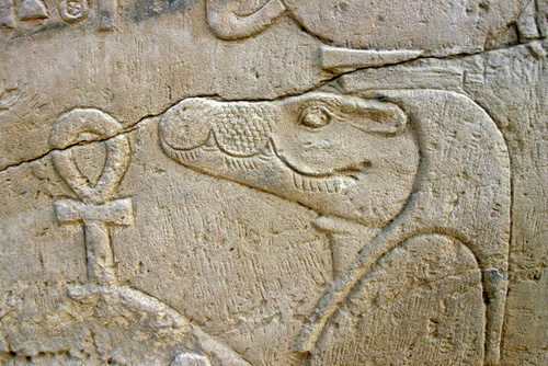 5 animales sagrados del Antiguo Egipto
