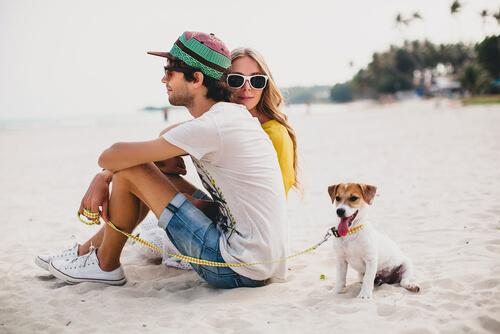 Cuándo es la mejor hora para pasear al perro