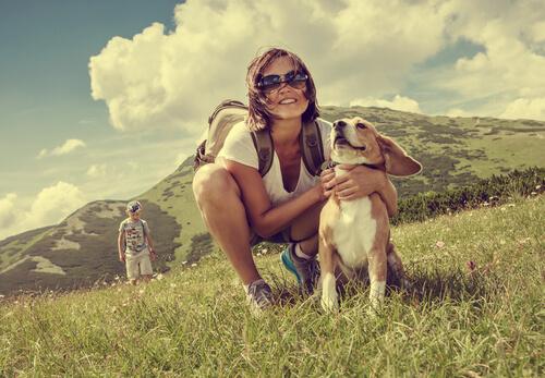 5 destinos europeos para viajar con tu perro