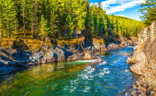 Ecosistema de ríos y lagos