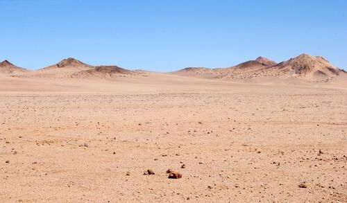 Ecosistema del desierto