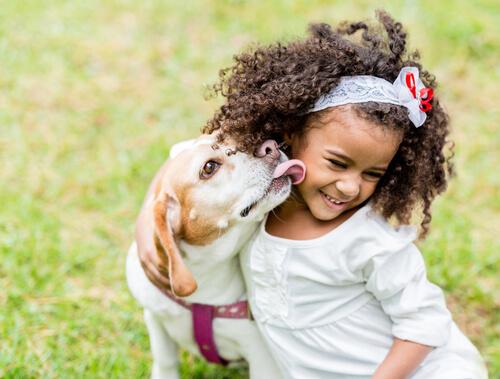 Cómo debe ser la interacción de un niño con los perros