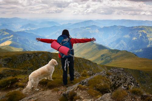 Ir a la montaña con perro