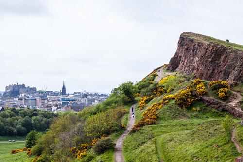 Viajar a Escocia con perro