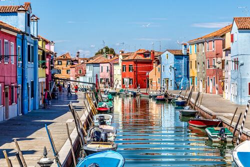 Viajar a Venecia con perro