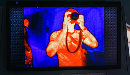 Visión infrarroja de las serpientes