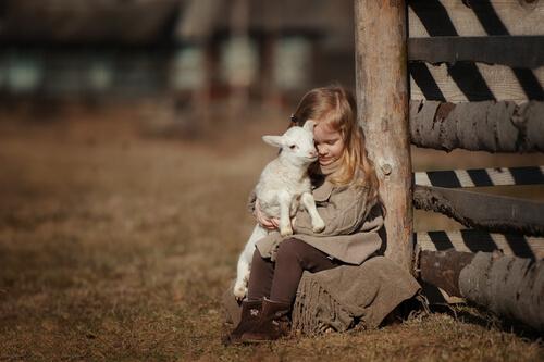 Coccidiosis en corderos: tratamiento