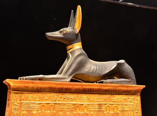 El papel del perro en civilizaciones antiguas