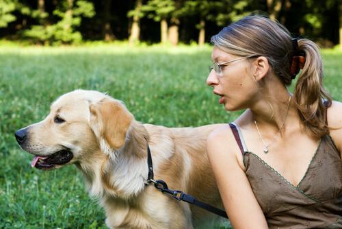 ¿Tu perro no te presta atención? ¡Mira estos consejos!