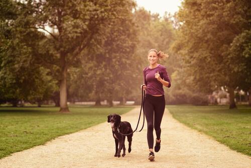 Beneficios físicos de tener un perro