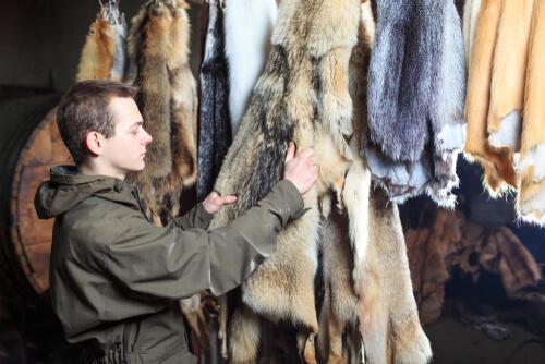 Comercio de pieles de animales