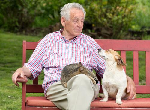 Las mascotas nos ayudan a vivir más años