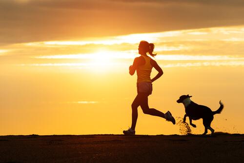 Mi perro y el running