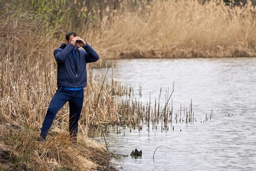 Observar aves con prismáticos