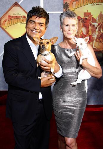 Película Un chihuahua en Beverly Hills
