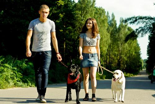 Salir de paseo con el perro