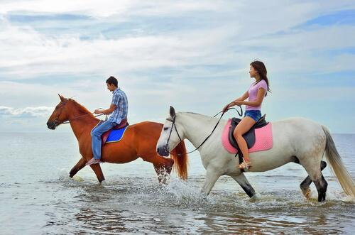 ¿Puedo pasear con mi caballo por la playa?