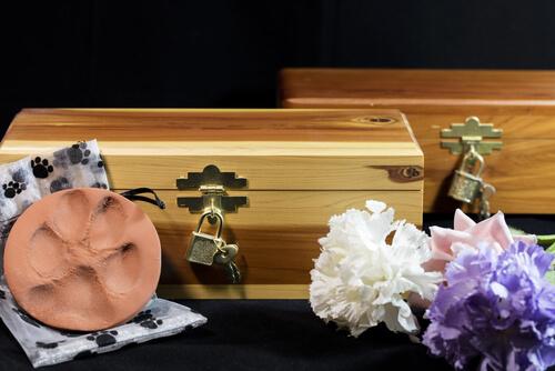 6 consejos para afrontar la muerte de tu mascota