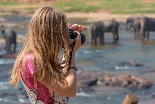 Los mejores safaris del continente africano