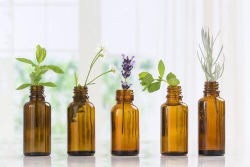 Uso de aceites aromáticos para nuestras mascotas