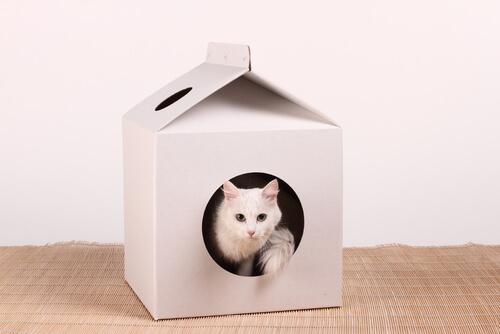 Casa para gatos de cartón