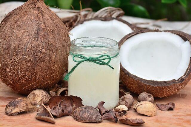 3 propiedades del aceite de coco para los perros