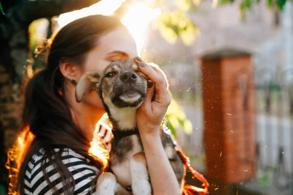 Adopción de una mascota.