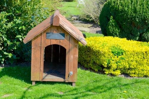 Caseta de perro en el jardín