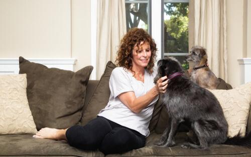 5 советов, если вы хотите работать собачником