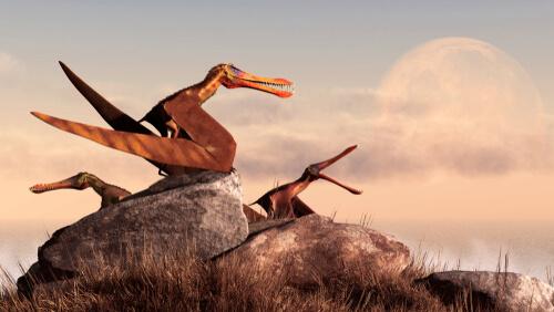 Pterosaurios: características