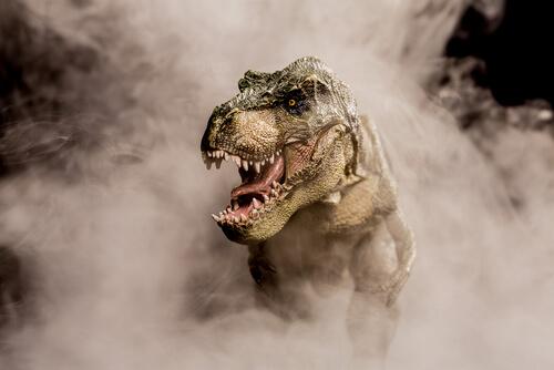 6 curiosidades sobre el Tiranosaurio rex que no conocías