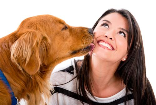 8 síntomas de que tu mascota te quiere