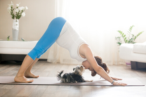 Yoga perro